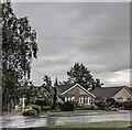 TF0820 : Photographing rain by Bob Harvey