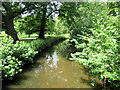 ST1777 : Stream in Bute Park Cardiff by Roy Hughes