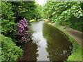 SE0512 : Huddersfield Narrow Canal, Marsden by Malc McDonald