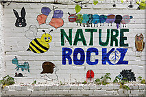 NT9953 : Nature Rockz by Walter Baxter