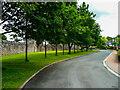 NY5228 : Brougham Hall Gardens, Eamont Bridge by Humphrey Bolton