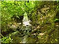 SE1289 : Harmby Waterfall by David Dixon