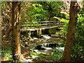 SE1289 : Footbridge at Harmby Waterfall by David Dixon