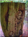 SE0986 : Ariel in the Tree by David Dixon