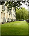 NS5468 : Balconies and weeping willow by Richard Sutcliffe