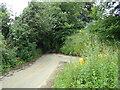 TL8836 : Twinstead Road, Lamarsh by Geographer