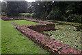 SK5204 : Kirby Muxloe Castle - the moat by Stephen McKay