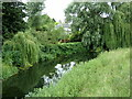 TL8838 : River Stour at Henny Street by Geographer