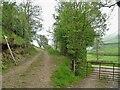 SO3470 : A walk from Hicks Farm to Brampton Bryan [4] by Michael Dibb