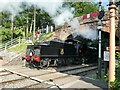 ST1629 : Steaming under the bridge at Bishops Lydeard by Stephen Craven
