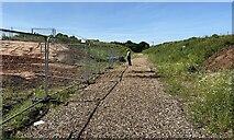SP3665 : HS2 enabling works, Welsh Road area, June 2021 (9) by Robin Stott