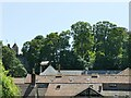 SS9943 : Dunster roofscape by Stephen Craven