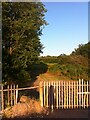 SP3387 : Site of Newdigate Colliery, Astley Lane, Bedworth by Alan Paxton