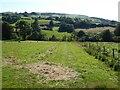 SN6470 : Farmland at Lledrod by Philip Halling