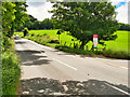 SE1685 : A6108 near Jervaulx Abbey by David Dixon