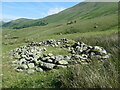 NY4414 : Ruined sheepfold, Ramps Gill by Christine Johnstone