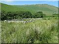 NY4315 : Restored sheepfold, Ramps Gill by Christine Johnstone