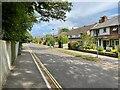 SU6353 : Houses along Darlington Road by Sandy B