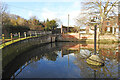 TG1106 : The millpond at Wramplingham by Adrian S Pye