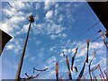 SP3379 : An Elephant up a Pole by Alan Paxton