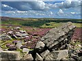 SK2580 : On Hathersage Moor by Graham Hogg