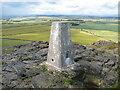 NT5584 : Triangulation pillar, North Berwick Law by Adrian Taylor