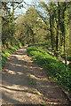 SX8552 : Track converging with lane by Derek Harper