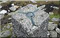 H6197 : Spider, Sawel Triangulation Pillar by Rossographer