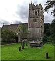 SO8000 : Church of St Bartholomew, Nympsfield, Gloucestershire by Jaggery
