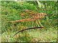 NY0565 : Dragonfly Sculpture by David Dixon