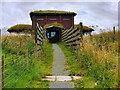 NY0565 : Salcot Merse Observatory, WWT Caerlaverock by David Dixon