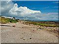 NX9754 : Coastal Path at Southerness by David Dixon