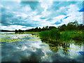 NX7661 : Castle Douglas, Carlingwark Loch by David Dixon
