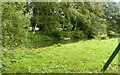 SK5041 : Medieval Moat, Strelley by Alan Murray-Rust