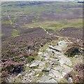 NN9268 : The Carn Liath path by Richard Webb