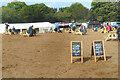 SU5712 : Food at Wickham Festival by Des Blenkinsopp