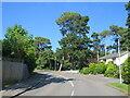 SZ0490 : Broadwater Avenue, Parkstone, near Poole by Malc McDonald