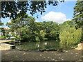 SZ0692 : Coy Pond, near Bournemouth by Malc McDonald