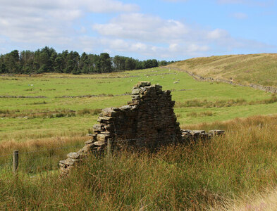 SD7423 : Ruin in the Upper Grane Valley by Chris Heaton