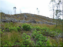 NR9383 : Deforested hill near Otter Hill Road by Thomas Nugent