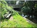 SU0100 : Bench alongside the river, Wimborne by Malc McDonald