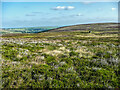SE0129 : View across Dimmin Dale, Wadsworth by Humphrey Bolton