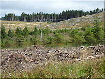 NR9381 : Deforestation by the B8000 road by Thomas Nugent