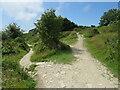 SY6971 : South West Coast Path near Easton, Isle of Portland by Malc McDonald