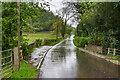 SO3629 : Bridge over Dulas Brook by Ian Capper
