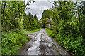 SO3730 : Passing Cwm Hill Farm by Ian Capper