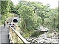 NY2823 : Eastern portal of the Bobbin Mill Tunnel by Oliver Dixon