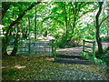 TL2222 : Horse stile and kissing gate on a byway, Knebworth by Humphrey Bolton