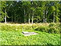 TL2222 : Wild flower meadow, Norton Green by Humphrey Bolton