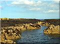 NU2438 : Longstone, The Farne Islands by habiloid